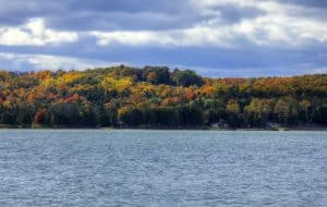northern-wisconsin-treeline-in-the-fall