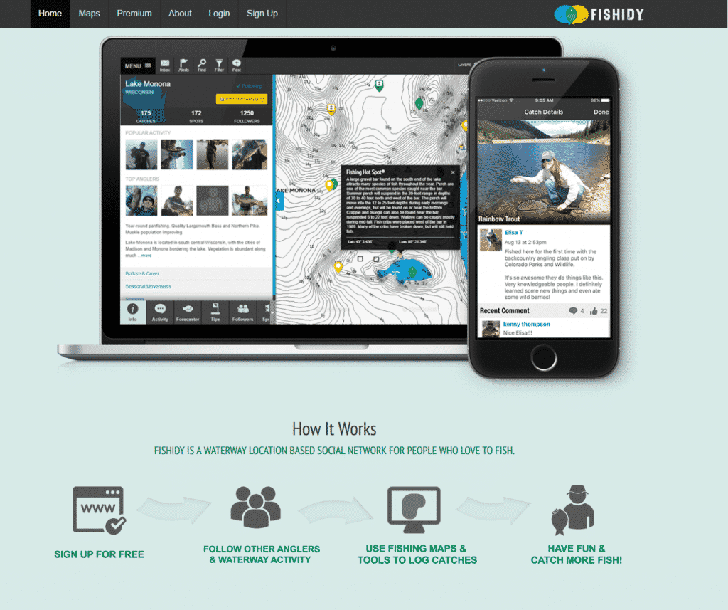 fishidy review - how fishidy works