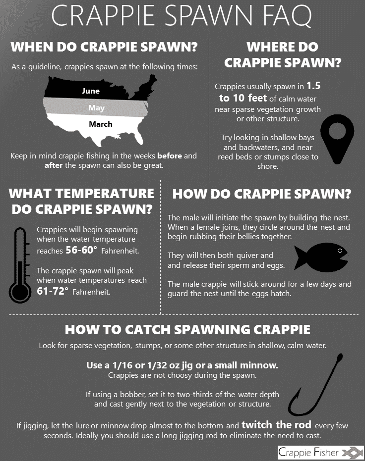 Crappie Spawn FAQ infographic