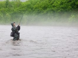 Will Crappie Bite During and After Rain