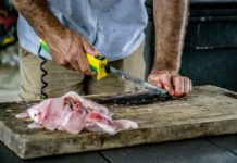 Filleting Crappie with an Electric Knife