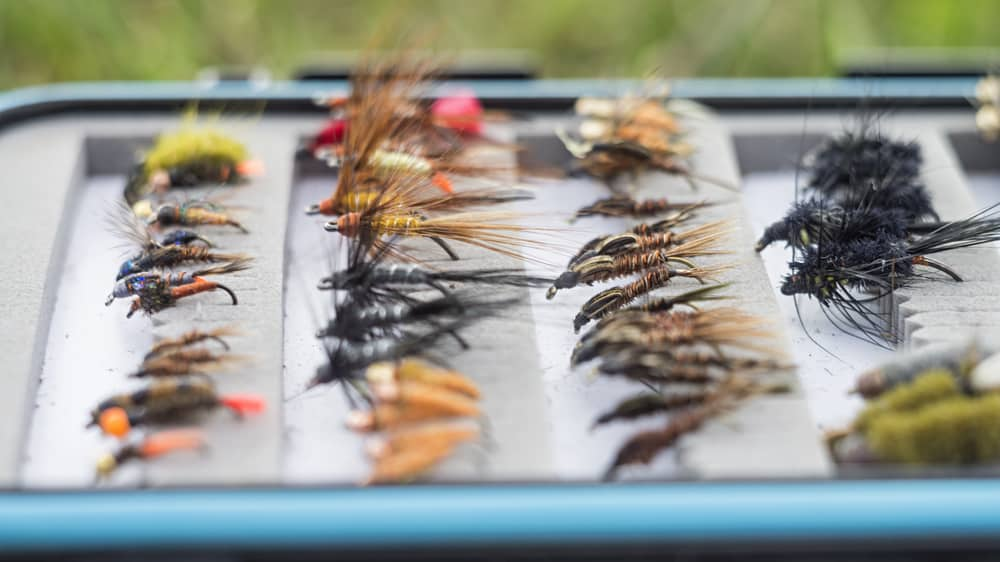 Best Flies for Crappie